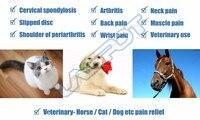 Холодной лазерной физиотерапии лошадей боли ветеринарной с помощью лечение артрита