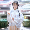 Traditional hanfu single tier pipa female shirt skirt small pear flower print autumn and winter Guang Dong Cantonese embroidery