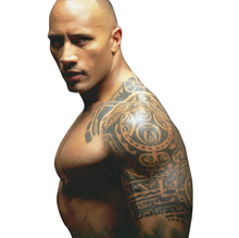 Temporary Tattoos Large Half Shoulder Arm Fake Transfer Tattoo Stickers Hot Sexy Men Spray Waterproof Designs