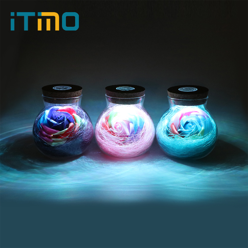 iTimo LED Romantic Bulb RGB Dimmer Lamp Rose Flower Bottle Light with Remote Control Night Light For Mom Lady Girl Birthday Gift