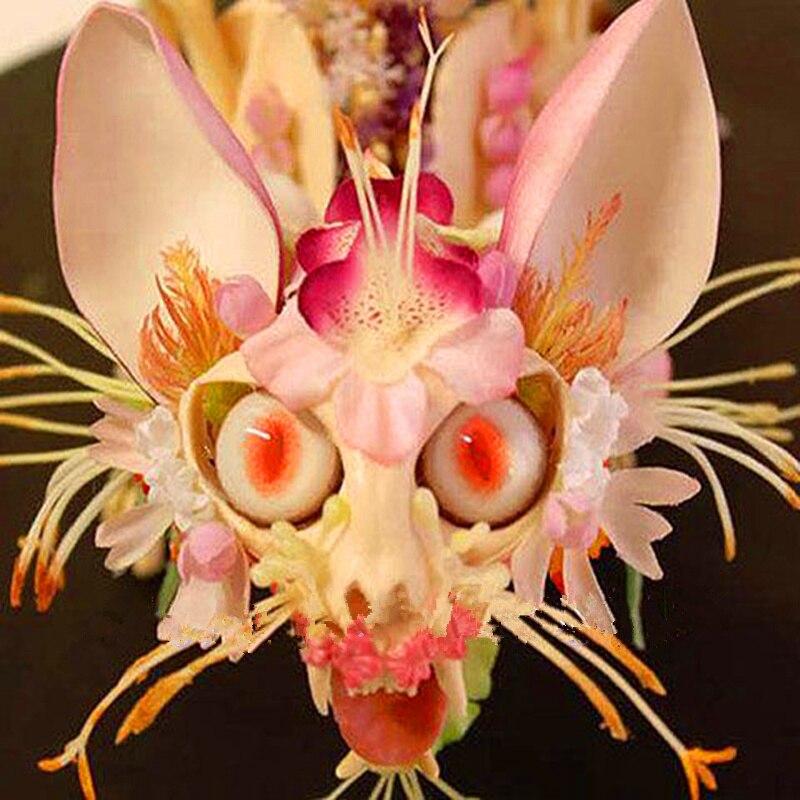 Редкие японские Орхидея с лицом обезьяны DIY домашние, садовые растения горшок карликовые деревья цветы 200 шт. человек Орхидея несколько сорт...