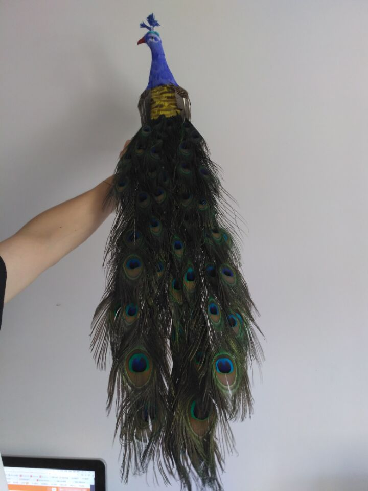 new simulation peacock model foam&furs colourful peacock doll gift about 80cm 1114 скороварка daewoo dec 3568