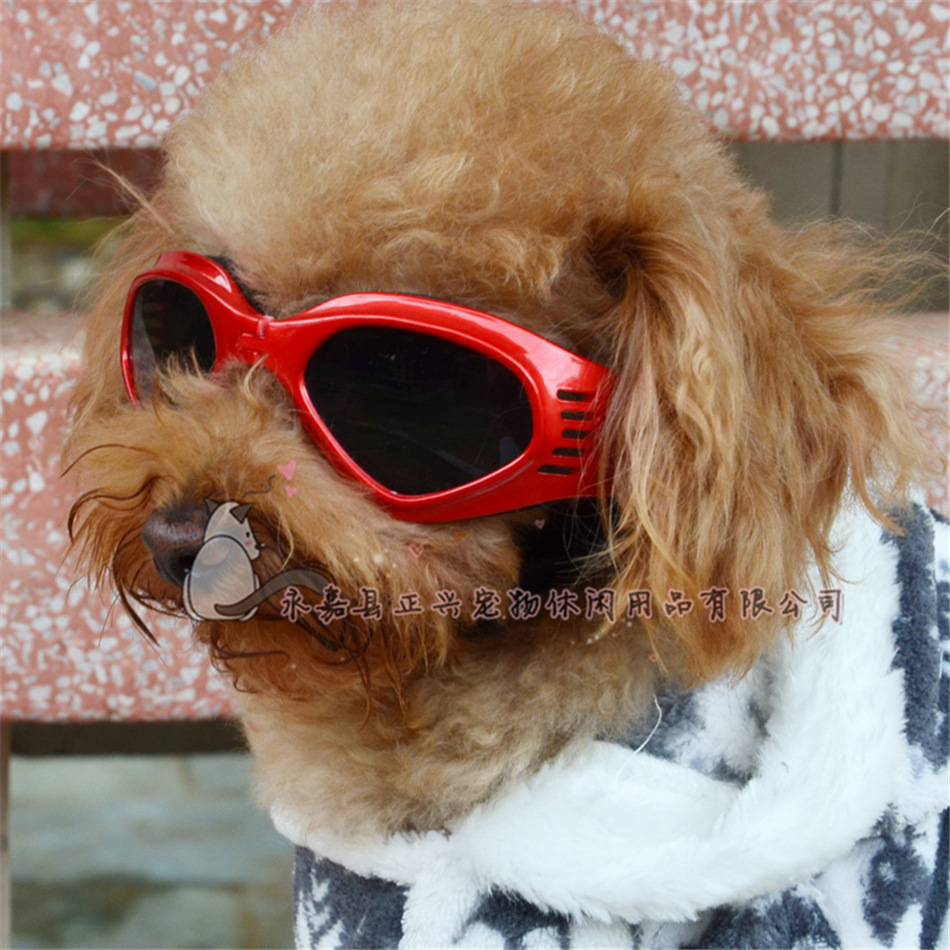Puppy Sunglasses  por glasses dogs glasses dogs lots from china