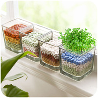 Anti Radiation Office Desktop Mini Grass Potted DIY Anion Small Bonsai With Glass Cup Grass Simple