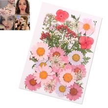 Спрессованные Цветы Смешанные органические натуральные сухие цветы DIY Искусство Цветочные декоры коллекция подарок JS21