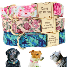Collier détiquette personnalisé pour chiens