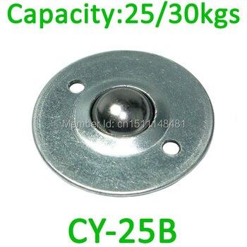 CY-25B 1