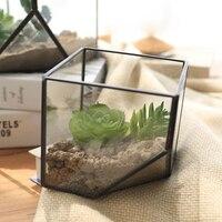 Plant Glass Terrarium Cube Fairy Garden House Greenhouse Terrarium Container For Gift DIY Home Wedding Decoration