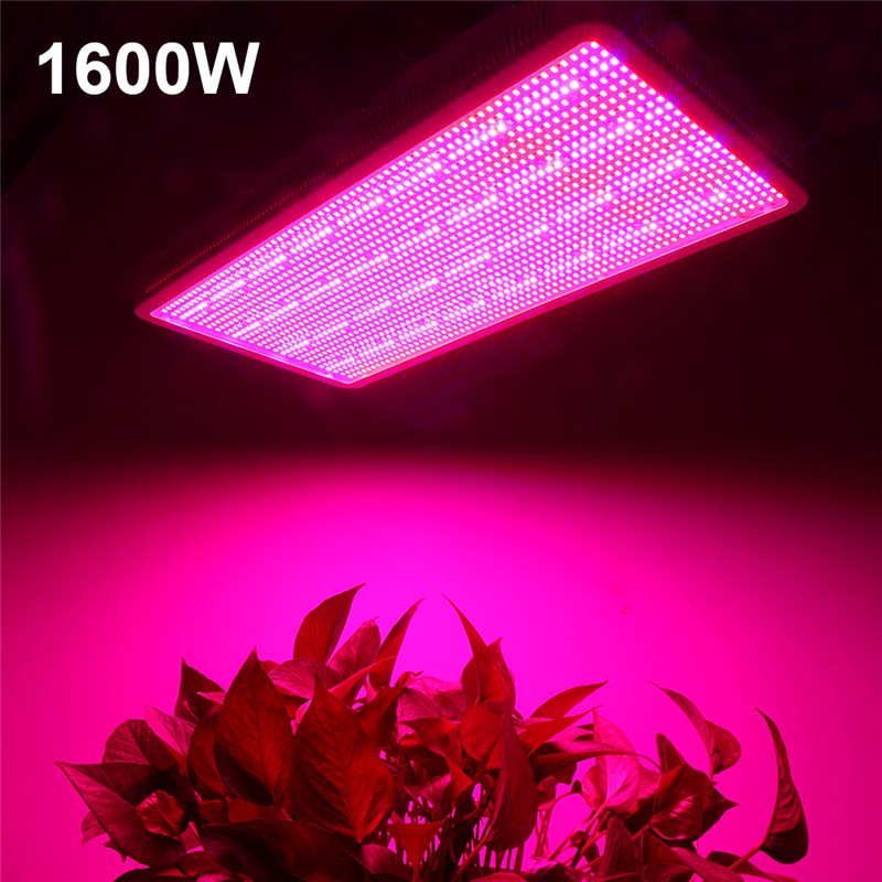 lowest price Neon LED Strip Light Flexible neon DC 12V IP67 waterproof Pink ice blue orange White red green