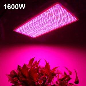 Image 4 - 300W 600W 800W 1200W 1600W ספקטרום מלא LED צמח לגדול אור מנורות עבור פרח צמח ירקות הידרופוניקה מערכת לגדול/בלום אוהל
