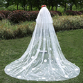 Appliques 3 Meters Wedding Bridal Veils Long With Comb Ivory White Elegant Two Layer Appliques Veil Crystal Wedding Accessories