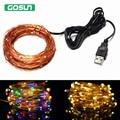 Hotsale 5V USB 10m 33FT 100 led Copper String Warm white/RBG Holiday Wedding Party Decoration Festival LED Fairy Lights Lamps
