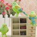 Детская музыка карман Моделирование акустическая пение птиц голосовое управление птица дети животных небольшие подарки