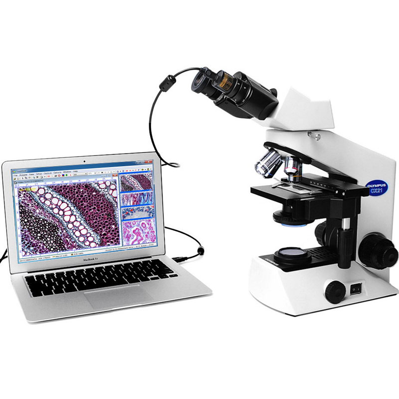 5MP USB 2.0 Eyepiece Digital Video Camera Biological Stereo Microscope Industrial Camera with Ring Adapter 23.2 30 30.5 mm-in Microscopes from Tools    3