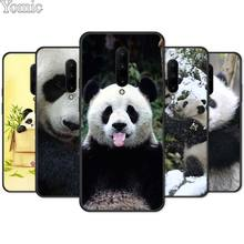 Cute Asian Baby Panda Bear Black Soft Case for Oneplus 7 7 Pro 6 6T 5T Silicone Phone Case for Oneplus 7 7Pro TPU Cover Shell