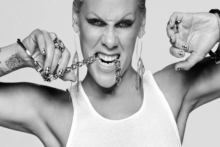 DIY frame (Alecia Beth Moore) Pop Rock Punk R&b Music Singer Poster Fabric Silk Posters And Prints For Home Decoration S1
