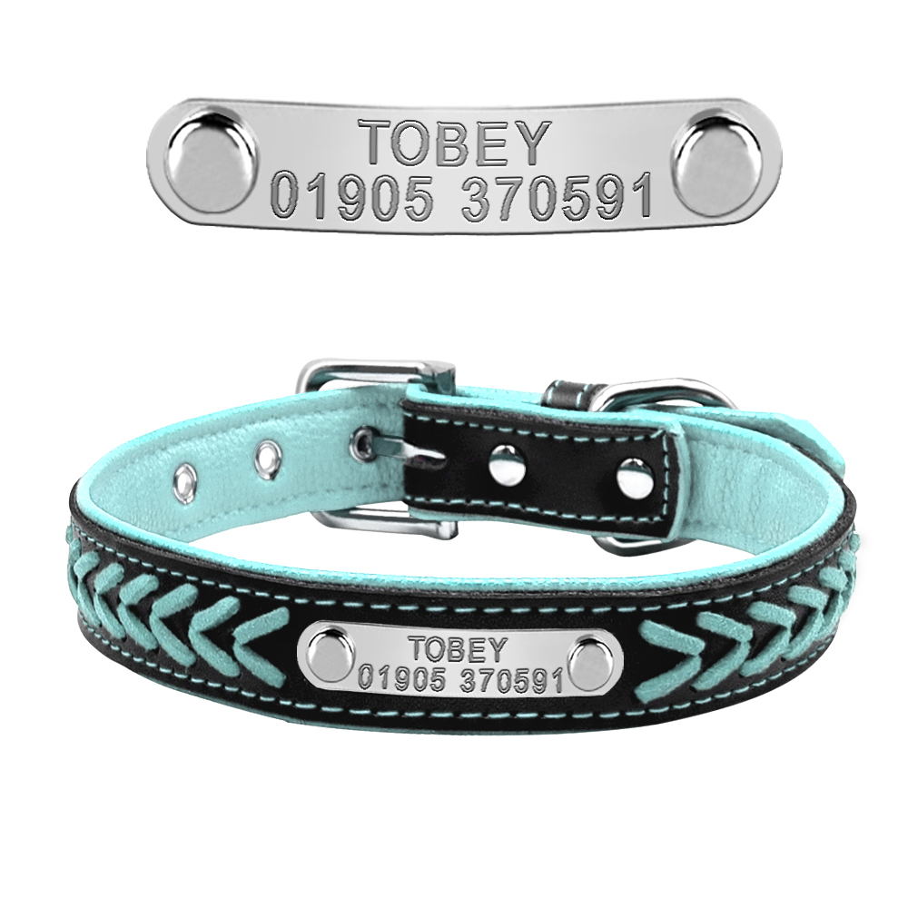 collier personnalisé bleu pour chien