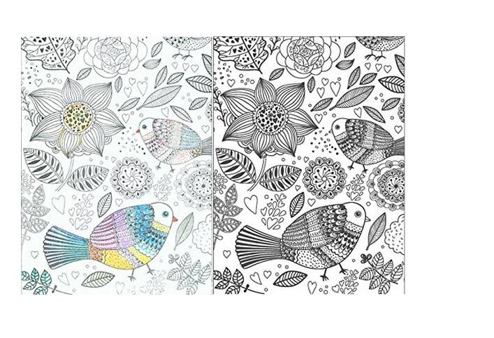 Faber castell lápices de colores solubles en Agua + Inspiración ZEN ...