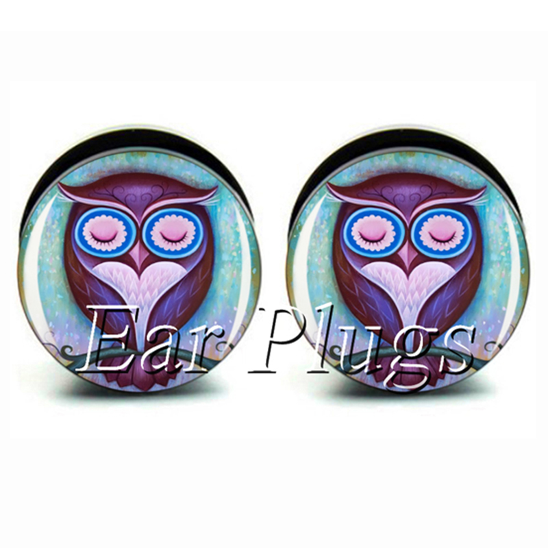 Wholesale 60pcs sleeping owl plug gauges acrylic screw ear plug tunnel ear gauges mix 10 sizes A0528
