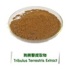 100 capsules Tribulus Terrestris Extract capsules Tribulus terrestris saponins