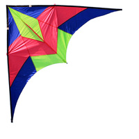 Professional Seagulls Triangle Sport 2.4 m Power Kite With Handle Line High Quality Good Flying