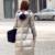 De alta Calidad de Las Mujeres Abajo Abrigo de Invierno 2016 Nuevas Señoras Con Capucha Femenina Chaqueta Larga Caliente Abrigos Gruesos Vidrios A Prueba de Viento Chaquetas Y145