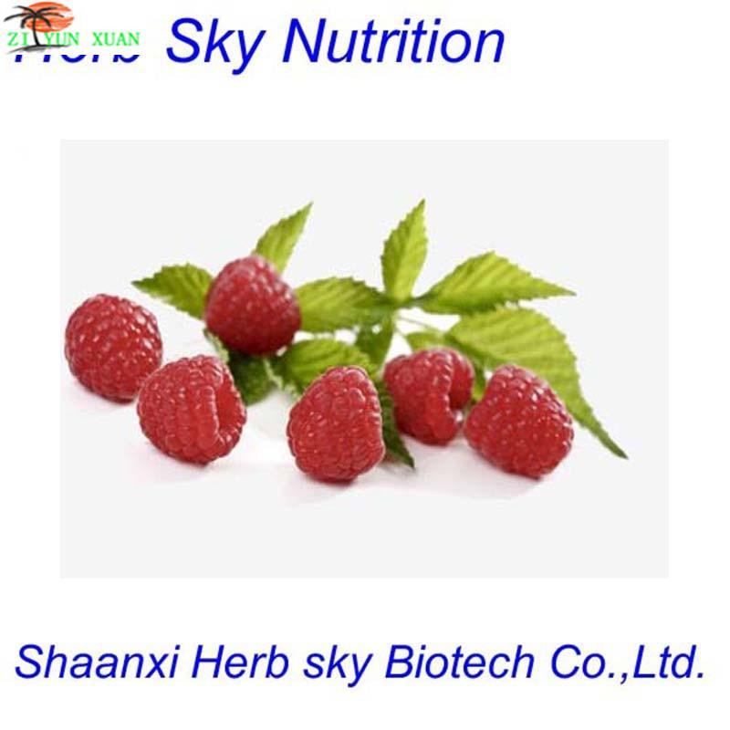 GMP100% Organic Raspberry Extraction/Raspberry Seed Extract/Raspberry Ketone Extract 1000g/lot