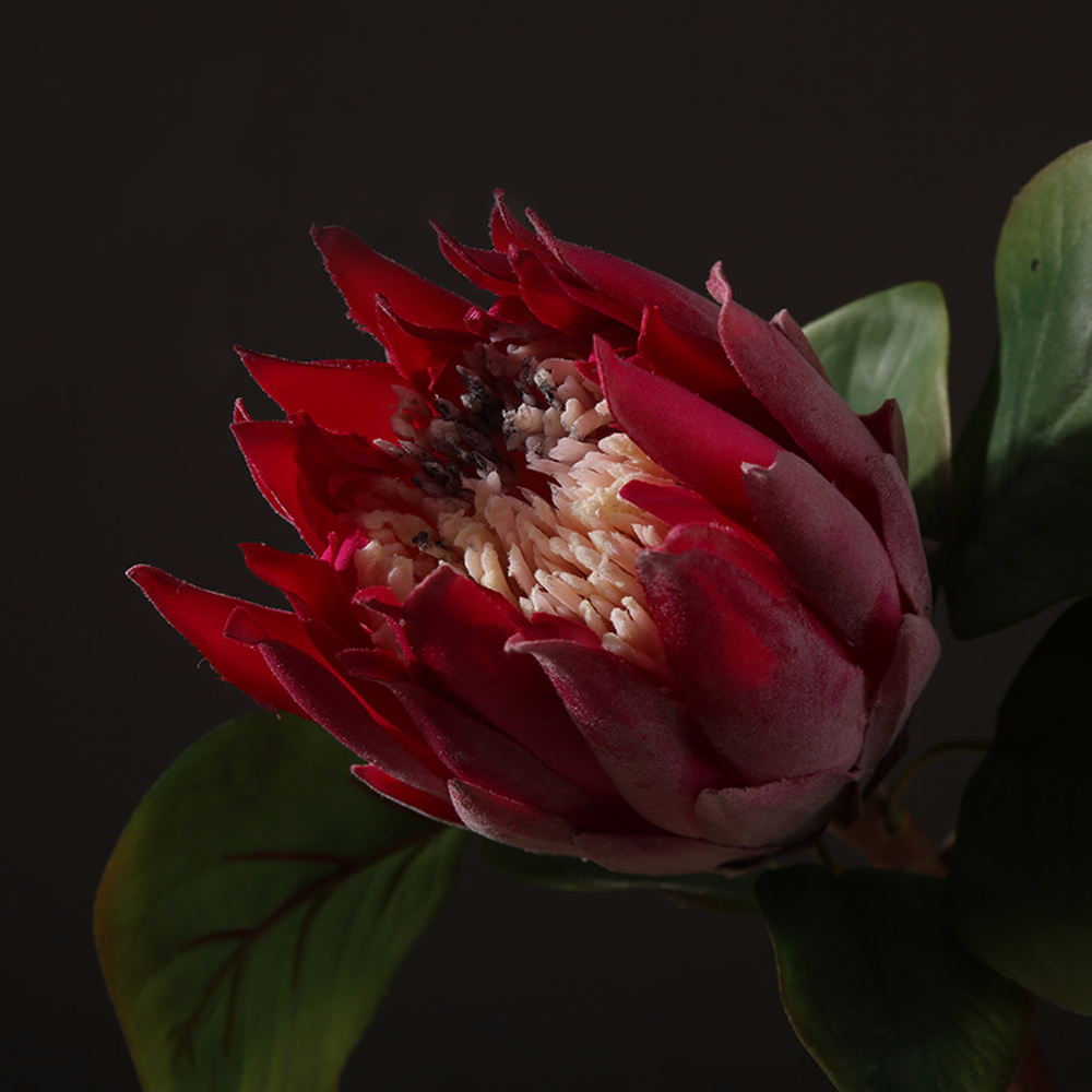 Buy Artificial Proteas And Get Free Shipping On Aliexpress