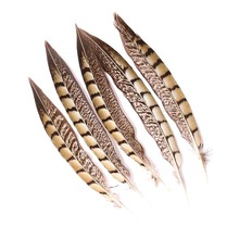30 Pieces Of Chicken Feather Natural 20-25CM Wedding Dress DIY Jewelry Fluffy Pop Decoration Crafts