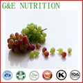 Organic Grape Seed Extract/Grape Seed Extract Powder 5:1 600g