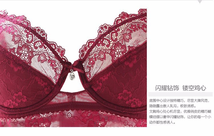 French Famous brand transparent bra romantic temptation lace bra set young women underwear set push up bra and panty set BS307 8