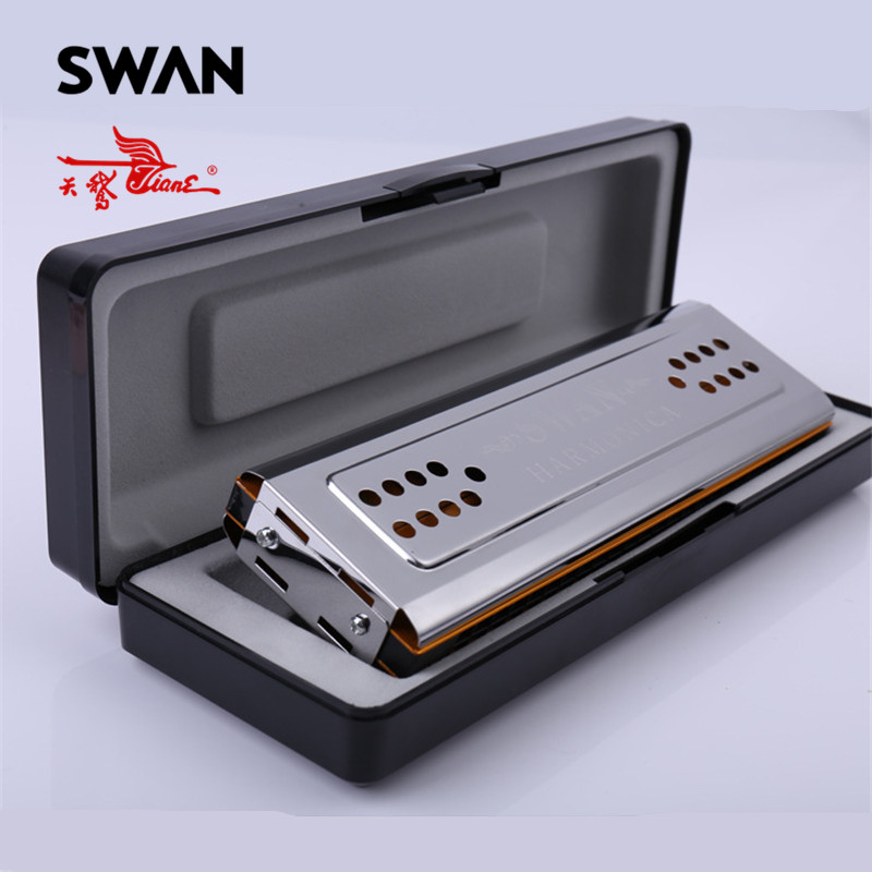 Swan SW24-12A Double Face Harmonica C/G Touches 24 Trous Cuivre Conseil En Acier Inoxydable Panneau De Couverture Tremolo Harmonica Dans Boîte en plastique