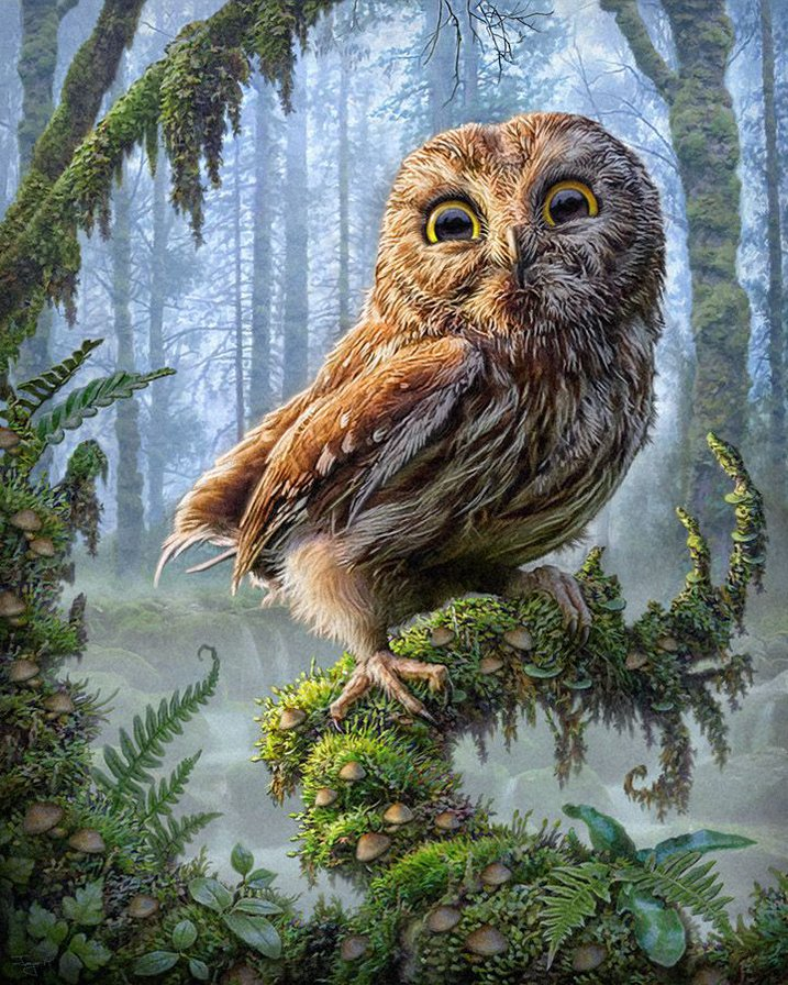 New Needlework,DIY DMC 14CT Unprinted Cross Stitch,Sets For Embroidery Kits,Jungle Owl Counted Cross-Stitching,Wall Home Animal