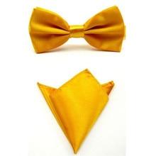 Галстук набор галстуки-бабочки для мужчин карманное квадратное полотенце Mariage желтое золото полиэстер платок с изображением бабочек