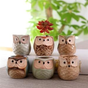 Image 2 - 6 Pcs 2.5 inch Ceramic Owl Succulent Planter Pot Succulent Container Cactus Plant Pot Mini Flower Pot With Holes
