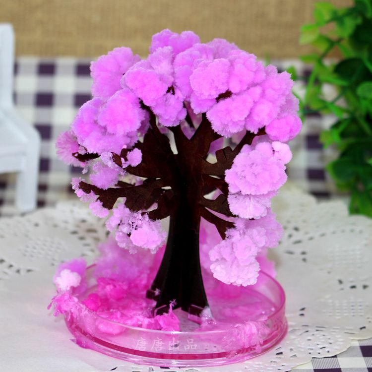 2017 10x8cm Cool Japan!ThumbsUp!Magic Japanese Sakura Tree-Brand New Made in Japan Pink Magically Decorative Growing Paper Trees
