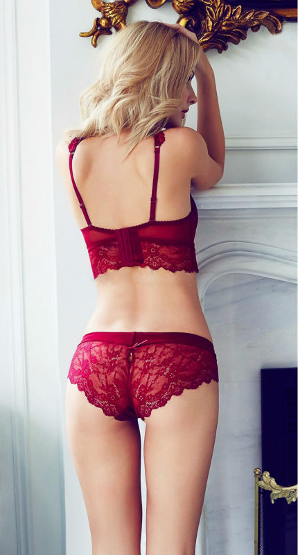 Sexy Mousse Women Sexy Bra Set Ultra-thin Red Black Lace Bras Underwear Plus size Push up Bra and Panties Set Cup A B C D 6