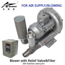 1HP 230v Industry Ring blower filling bottles regenerative Relief Valve&filter with Frequency Converter stepless adjust