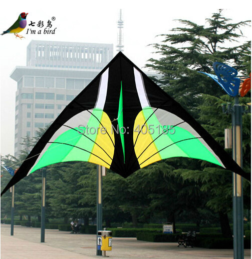 Free Shipping Outdoor Fun Sports 2.8 m Nylon  Green Bird Delta Kite New For Christmas Gift ручка daily fun разные дизайны quad ruled green