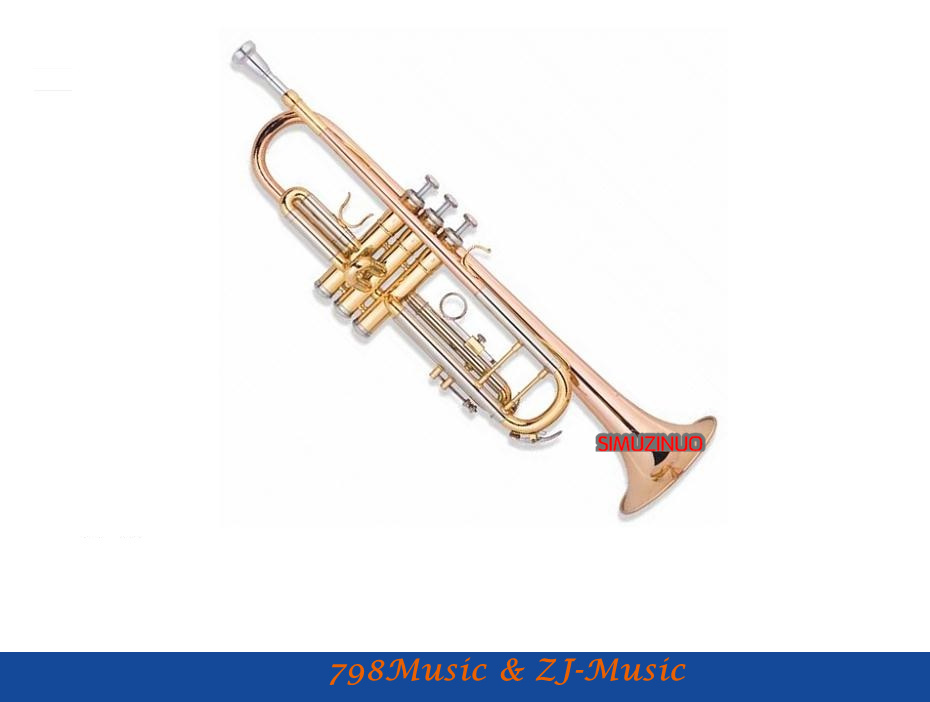 Trumpet Fortified Model With Case-Bore Size 11.65mm-Bell DIA.123mm