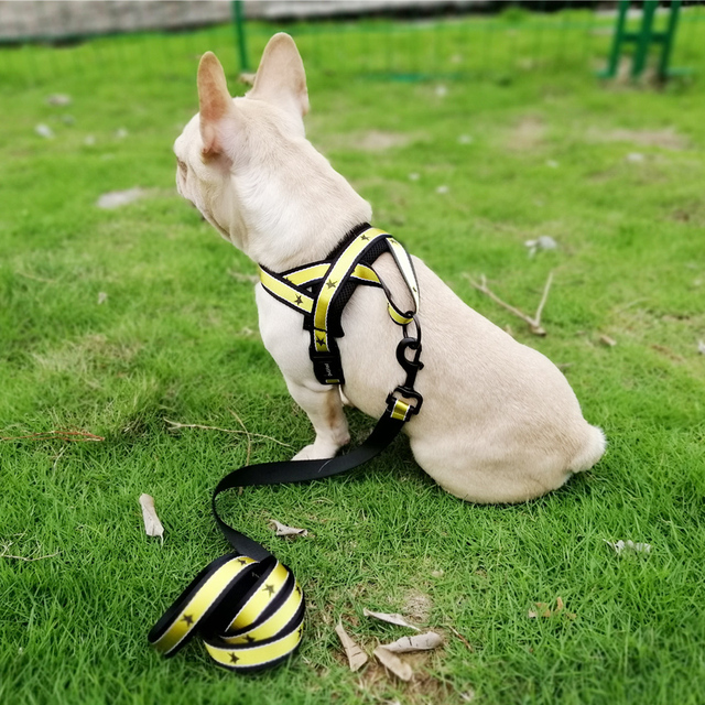Adjustable Outdoor No-Pull Pet Harness