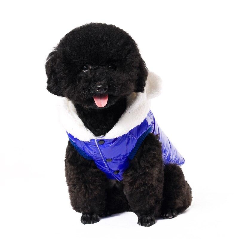 Նոր հագուստ WAGETON Fashion Dog հագուստի - Ապրանքներ կենդանիների համար - Լուսանկար 3