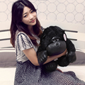 Stuffed animal 35cm Chimpanzee plush toys kawaii apes plush doll cute plush pillow kids toys valentine day birthday gift
