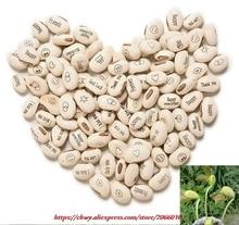 Buy 10PCS Magic Growing Message Beans Seeds Magic Be online