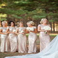 Champagne gold Long Bridesmaid Dress Sequined Short Sleeve Floor Length Bridesmaid Dress 2015 Prom Gown Wedding Party Dress BD54