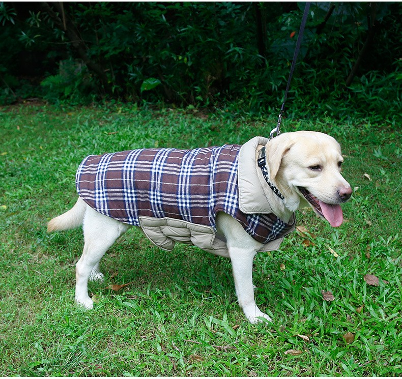 large dog clothes (5)