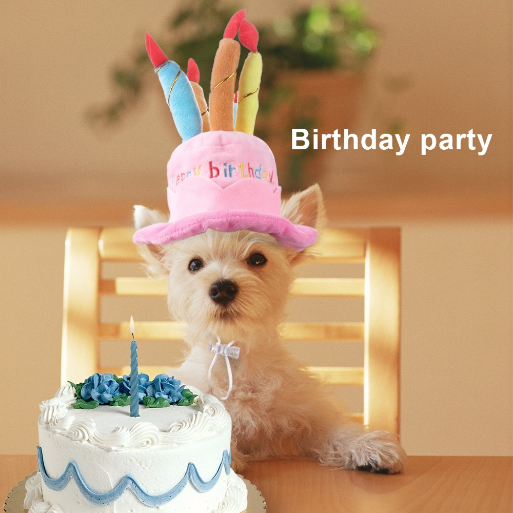 pet birthday hat for cats and dogs puppy cake cap with candles super