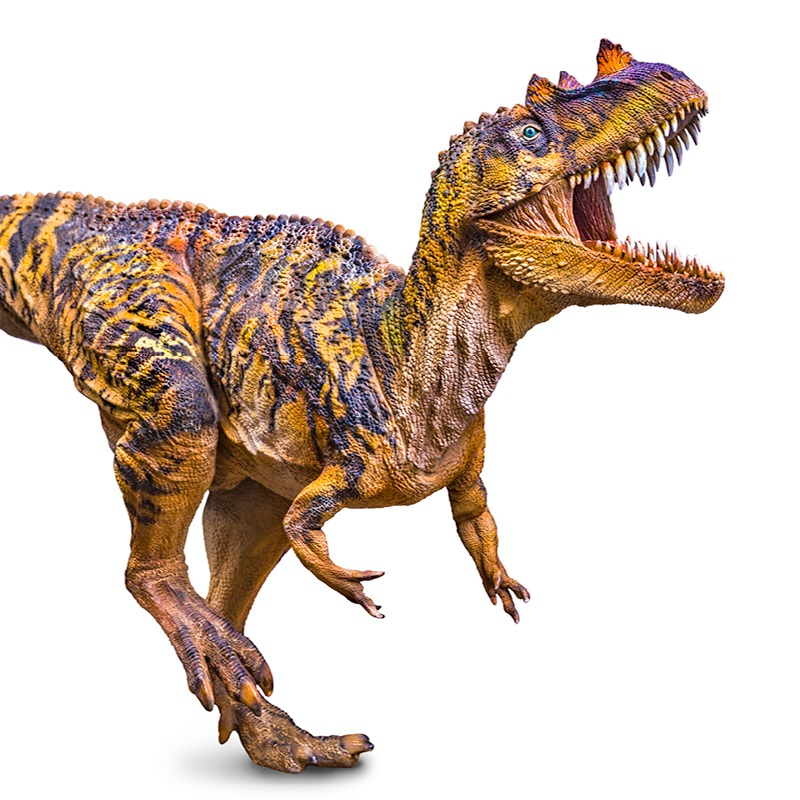 Big Size 58 CM PNSO Ceratosaurus Dinosaur Classic Toys For Boys Animal Model-in Action & Toy Figures from Toys & Hobbies    1
