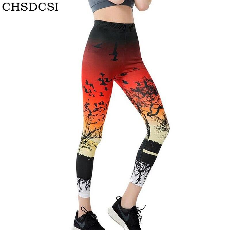 Chsdcsi wholelsales леди Activewear модные женские туфли Леггинсы для женщин 3D печатных Цвет Legins Ray леггинсы Штаны с высокой посадкой леггинсы женские