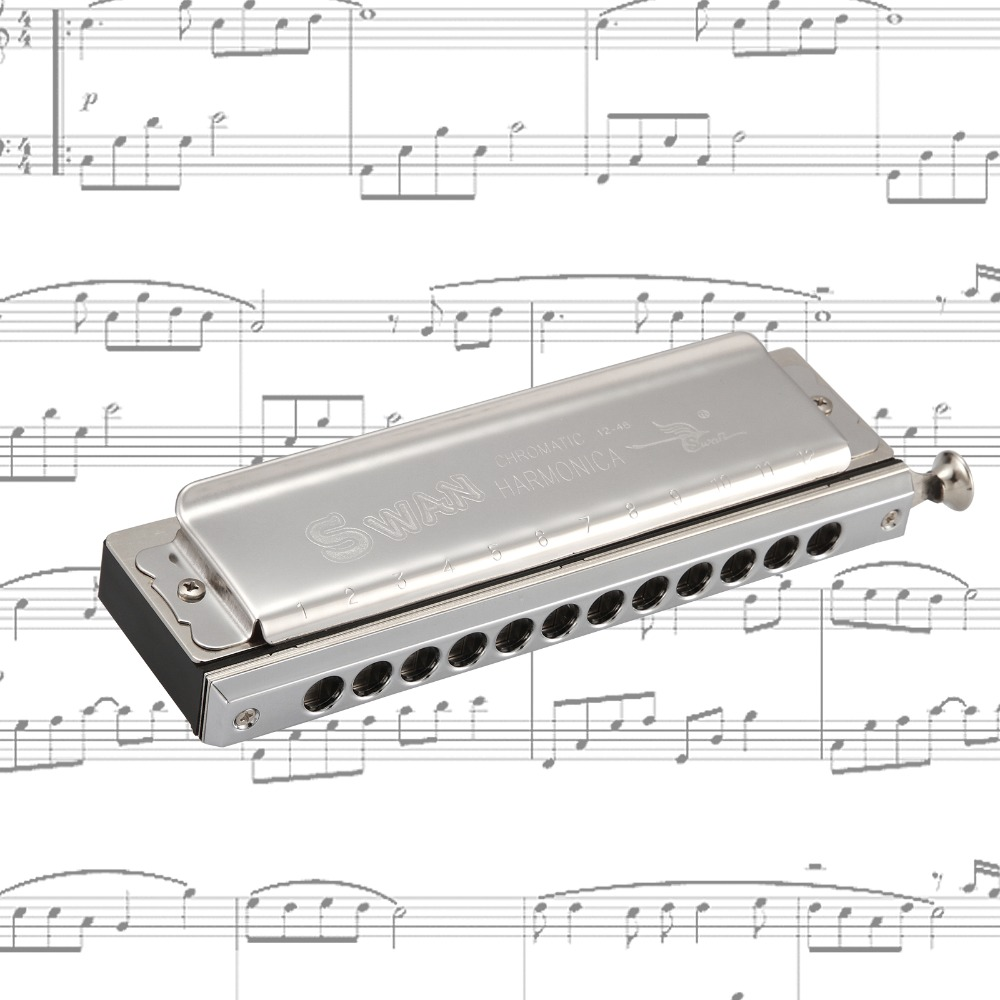 Ru 12 Hole 48 Tone Easttop Chromatic Harmonica copper C Armonica Mouth Ogans Instrumentos de Musica Chromatic Harmonica
